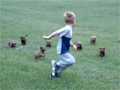 Puppy Gang Chases Kid video
