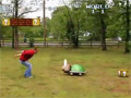 Real Life Super Mario Bros video