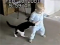 Baby Fight vs Cat video