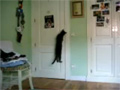 Smart Cat Open the Door video